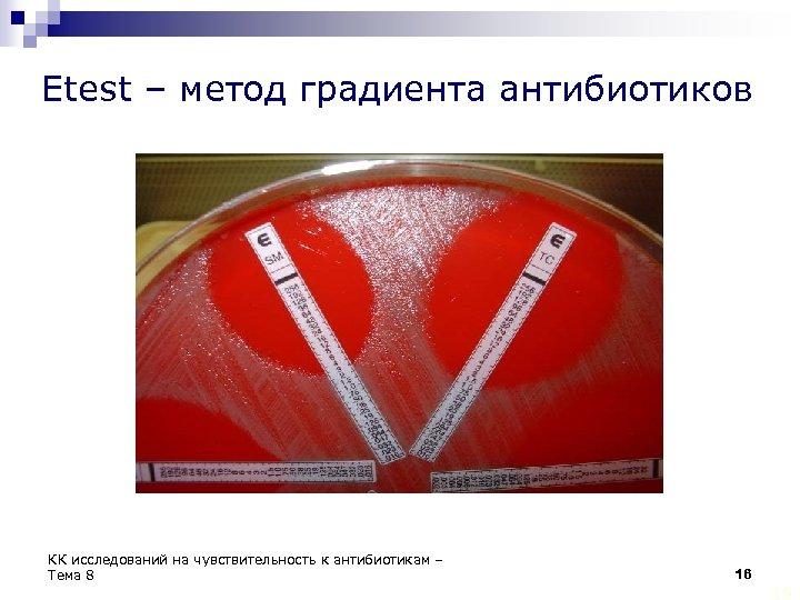 Etest – метод градиента антибиотиков КК исследований на чувствительность к антибиотикам – Тема 8