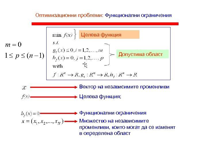 Оптимизационни проблеми: Функционални ограничения Целева функция Допустима област Вектор на независимите променливи Целева функция;