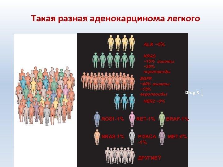 Такая разная аденокарцинома легкого ALK ~5% KRAS ~15% азиаты ~30% европеоиды EGFR ~40% азиаты