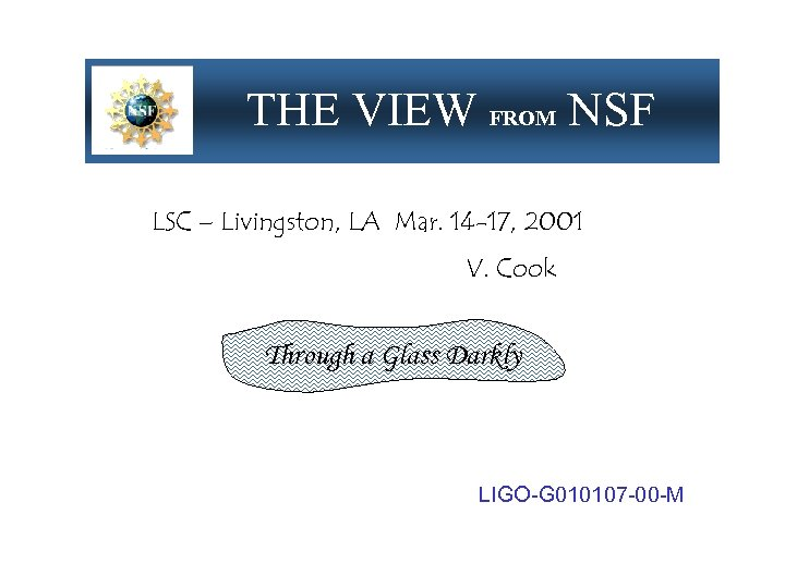 THE VIEW FROM NSF LSC – Livingston, LA Mar. 14 -17, 2001 V. Cook