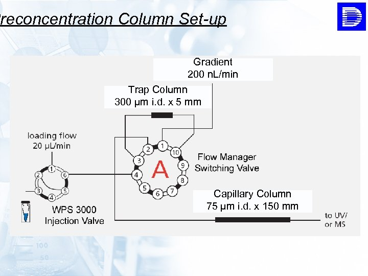 Preconcentration Column Set-up Gradient 200 n. L/min Trap Column 300 µm i. d. x