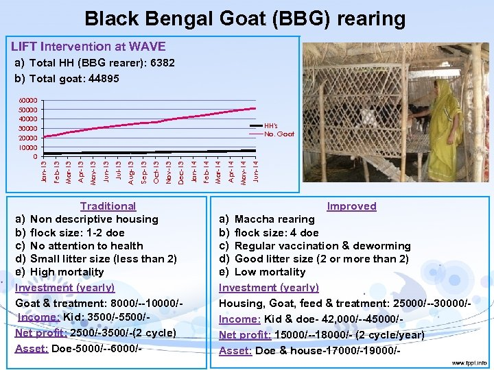 Black Bengal Goat (BBG) rearing LIFT Intervention at WAVE a) Total HH (BBG rearer):