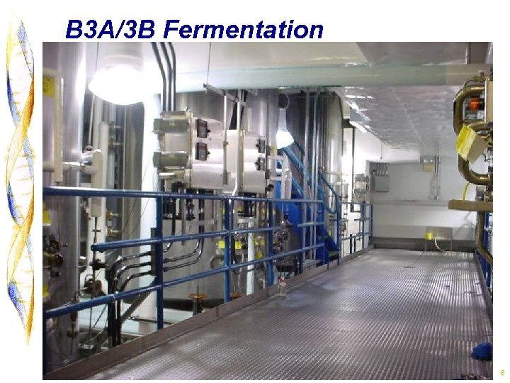B 3 A/3 B Fermentation 8