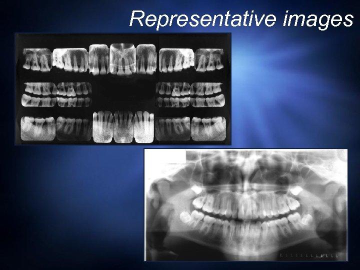 Representative images © Dr. E. Platin