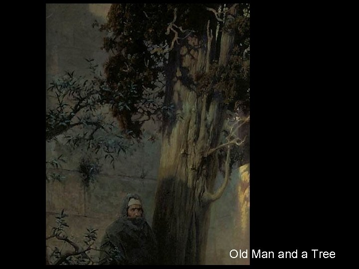 Old Man and a Tree