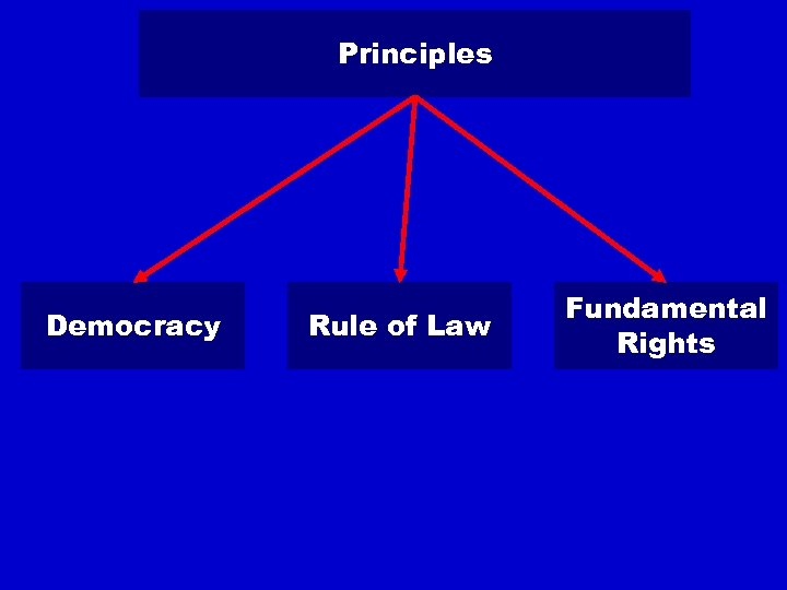 Principles Democracy Rule of Law Fundamental Rights