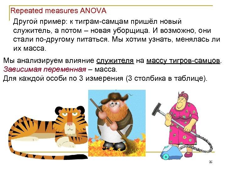 Repeated measures ANOVA Другой пример: к тиграм-самцам пришёл новый служитель, а потом – новая
