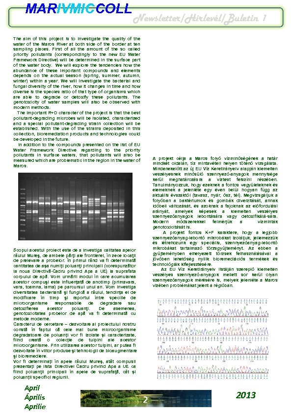 MARIVMICCOLL Newsletter/Hírlevél/Buletin 1 The aim of this project is to investigate the quality of