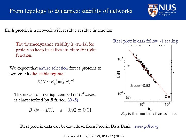 From topology to dynamics: stability of networks Each protein is a network with residue-residue