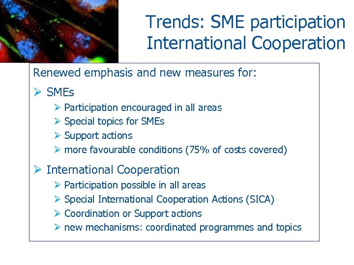 Trends: SME participation International Cooperation Renewed emphasis and new measures for: Ø SMEs Ø