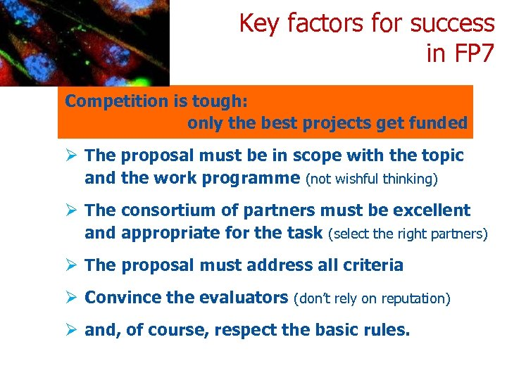 Key factors for success in FP 7 Competition is tough: only the best projects