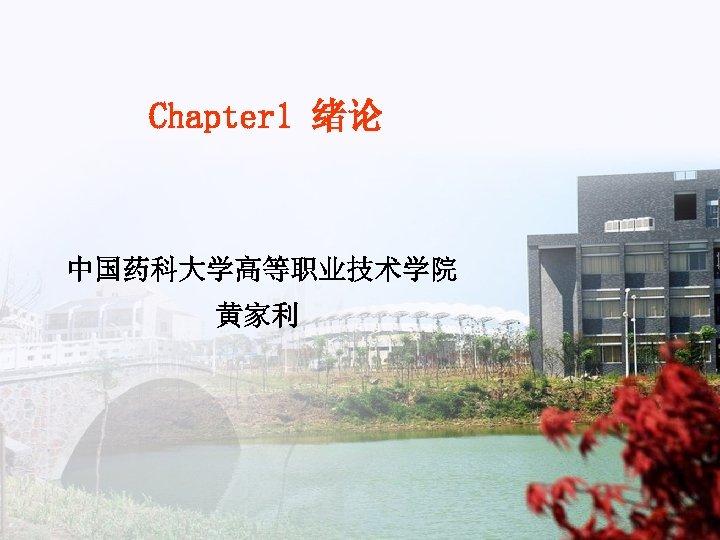Chapter 1 绪论 中国药科大学高等职业技术学院 黄家利