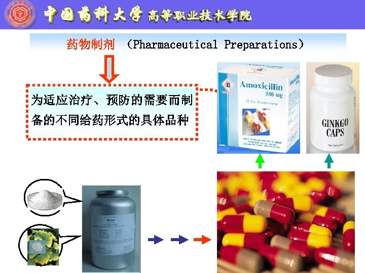 药物制剂 (Pharmaceutical Preparations) 为适应治疗、预防的需要而制 备的不同给药形式的具体品种