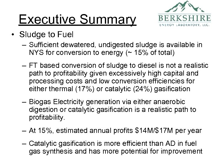 Executive Summary • Sludge to Fuel – Sufficient dewatered, undigested sludge is available in