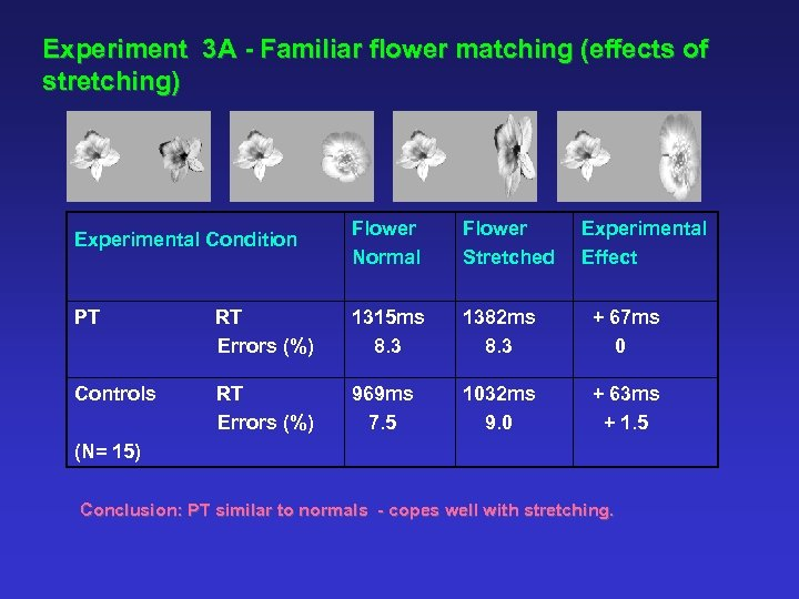 Experiment 3 A - Familiar flower matching (effects of stretching) Experimental Condition Flower Normal