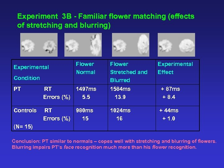 Experiment 3 B - Familiar flower matching (effects of stretching and blurring) Experimental Condition