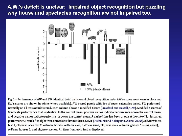 A. W. 's deficit is unclear; impaired object recognition but puzzling why house and