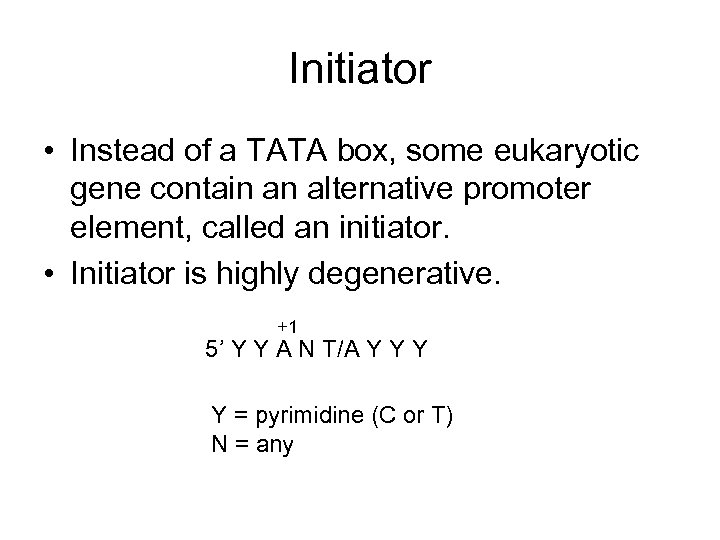Initiator • Instead of a TATA box, some eukaryotic gene contain an alternative promoter
