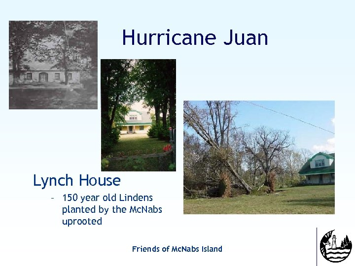 Hurricane Juan Lynch House – 150 year old Lindens planted by the Mc. Nabs