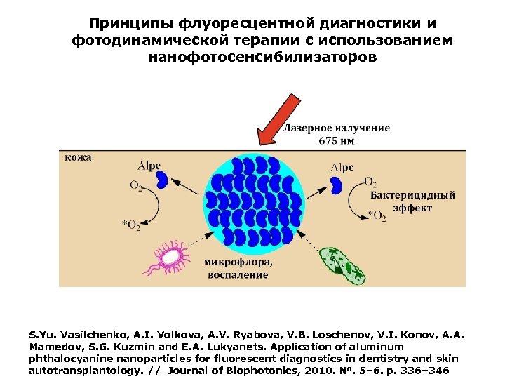 Принципы флуоресцентной диагностики и фотодинамической терапии с использованием нанофотосенсибилизаторов S. Yu. Vasilchenko, A. I.