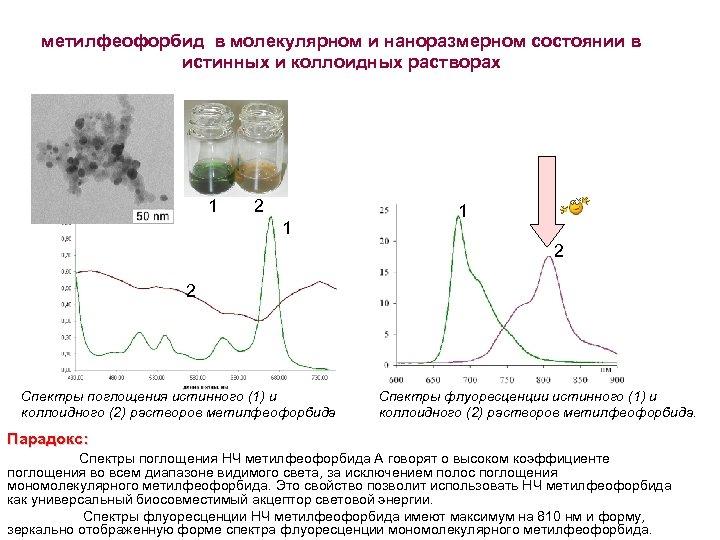 метилфеофорбид в молекулярном и наноразмерном состоянии в истинных и коллоидных растворах 1 2 1