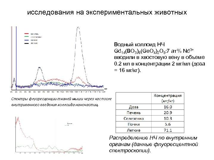 исследования на экспериментальных животных Водный коллоид НЧ Gd 14(BO 3)6(Ge. O 4)2 O 8:
