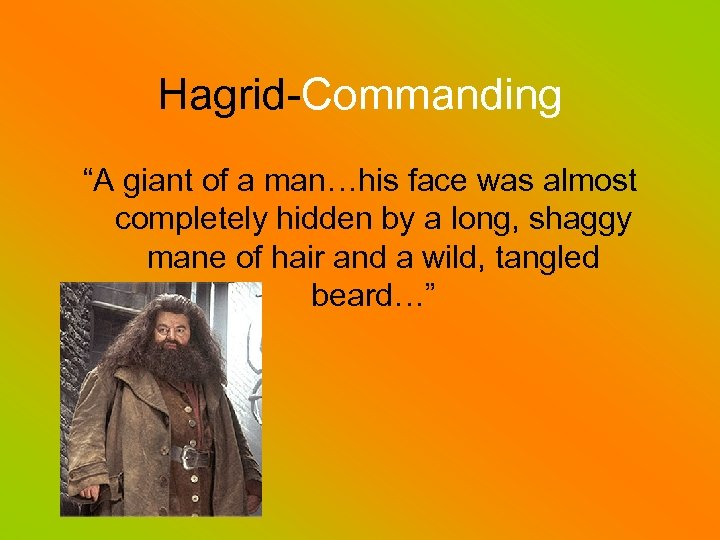 """Hagrid-Commanding """"A giant of a man…his face was almost completely hidden by a long,"""