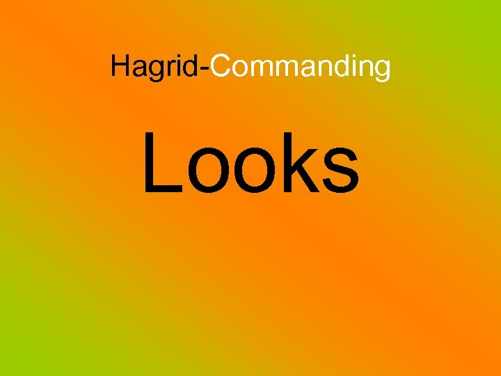 Hagrid-Commanding Looks