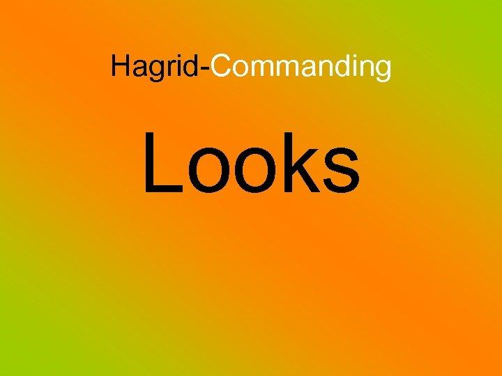 Hagrid-Commanding Looks