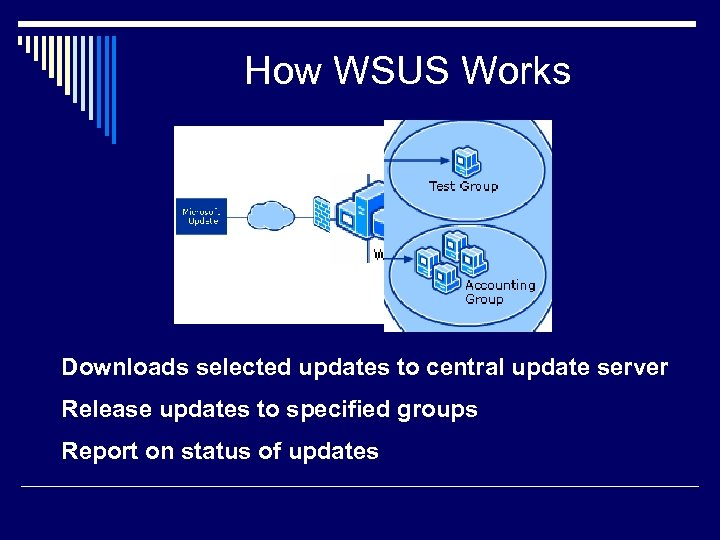 How WSUS Works Downloads selected updates to central update server Release updates to specified