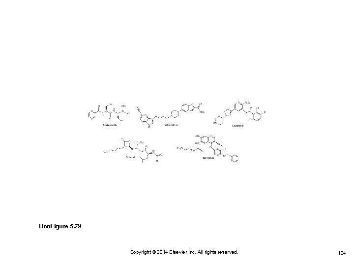 Unn. Figure 5. 79 Copyright © 2014 Elsevier Inc. All rights reserved. 124