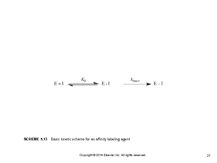 SCHEME 5. 13Basic kinetic scheme for an affinity labeling agent Copyright © 2014 Elsevier
