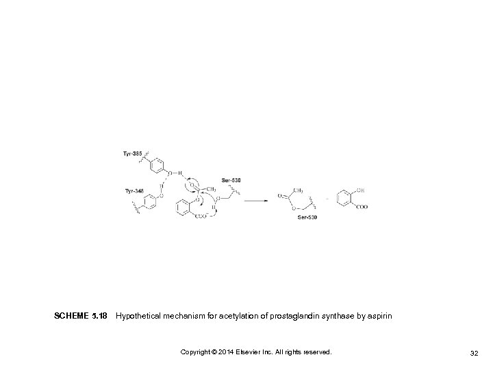 SCHEME 5. 18Hypothetical mechanism for acetylation of prostaglandin synthase by aspirin Copyright © 2014