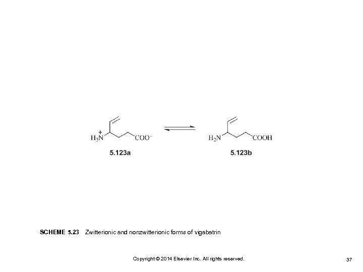 SCHEME 5. 23Zwitterionic and nonzwitterionic forms of vigabatrin Copyright © 2014 Elsevier Inc. All