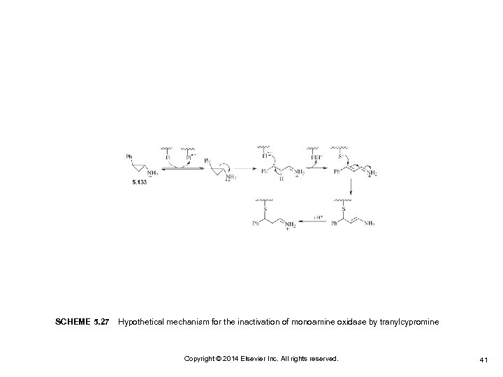 SCHEME 5. 27 Hypothetical mechanism for the inactivation of monoamine oxidase by tranylcypromine Copyright ©