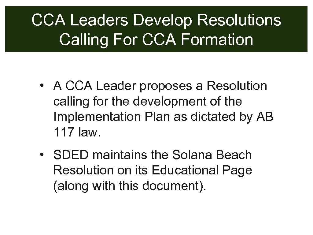 CCA Leaders Develop Resolutions Calling For CCA Formation • A CCA Leader proposes a