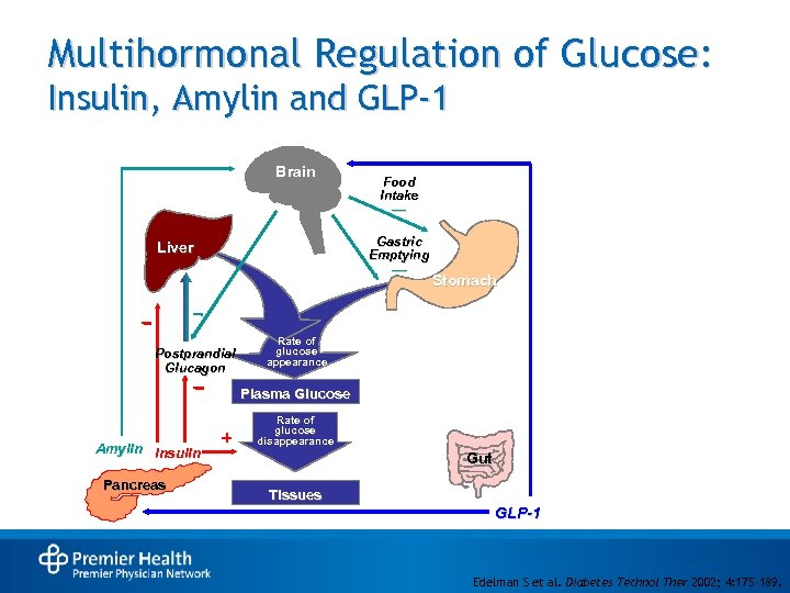 Multihormonal Regulation of Glucose: Insulin, Amylin and GLP-1 Brain Food Intake — Gastric Emptying