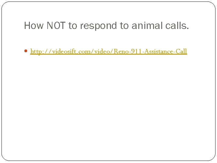 How NOT to respond to animal calls. http: //videosift. com/video/Reno-911 -Assistance-Call