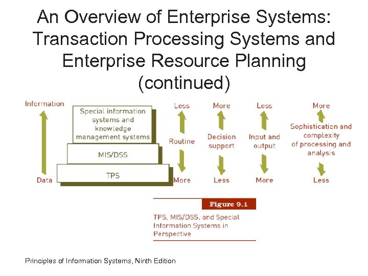 An Overview of Enterprise Systems: Transaction Processing Systems and Enterprise Resource Planning (continued) Principles