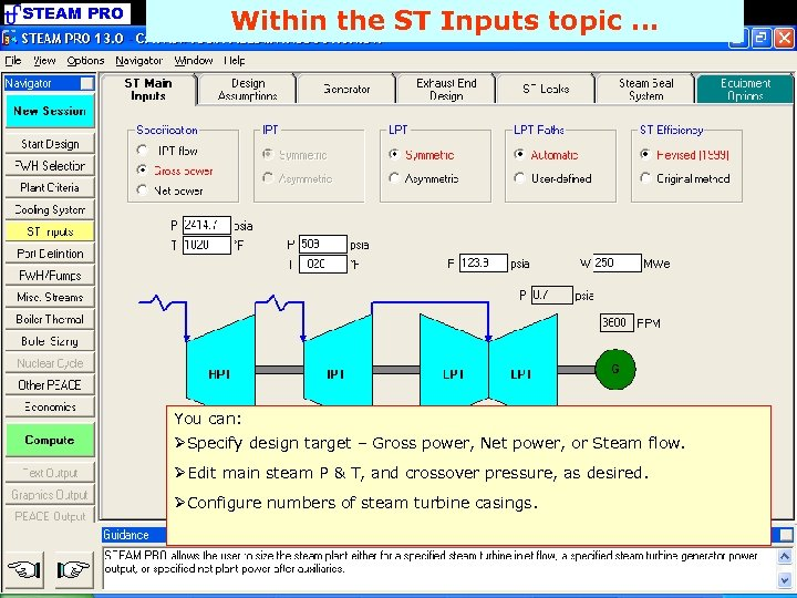 STEAM PRO Within the ST Inputs topic. . . You can: ØSpecify design target
