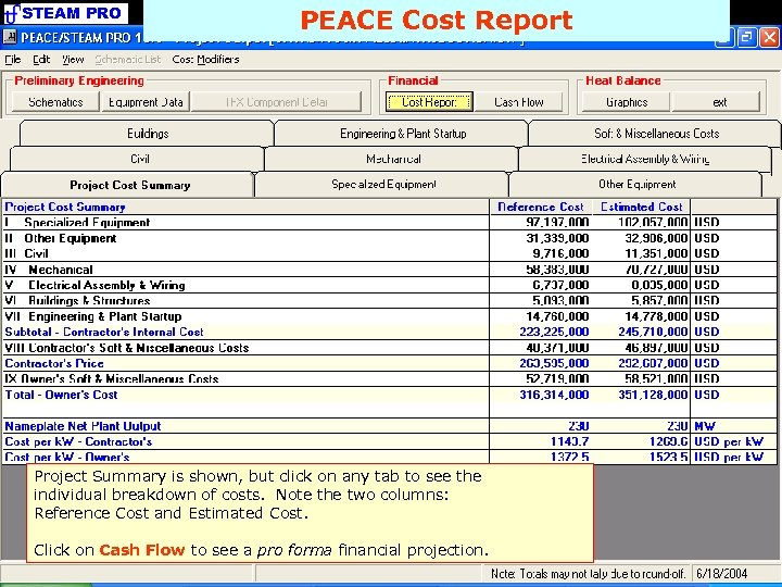 STEAM PRO PEACE Cost Report Project Summary is shown, but click on any tab