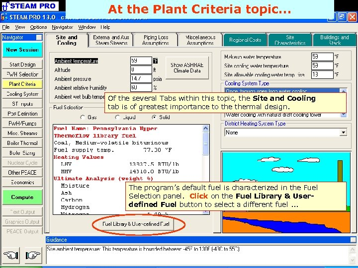 STEAM PRO At the Plant Criteria topic. . . Of the several Tabs within