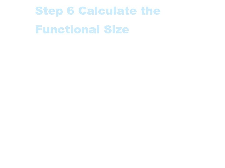 Step 6 Calculate the Functional Size The Functional Size (Function Point Index) is the