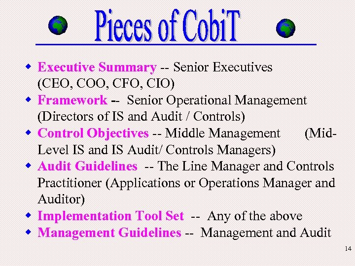w Executive Summary -- Senior Executives (CEO, COO, CFO, CIO) w Framework -- Senior
