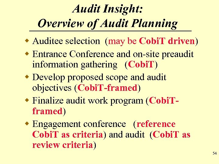 Audit Insight: Overview of Audit Planning w Auditee selection (may be Cobi. T driven)
