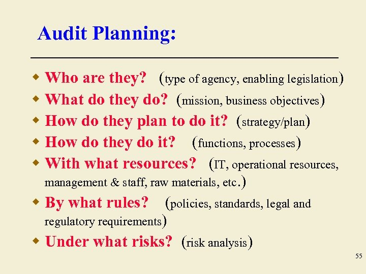 Audit Planning: w Who are they? (type of agency, enabling legislation) w What do