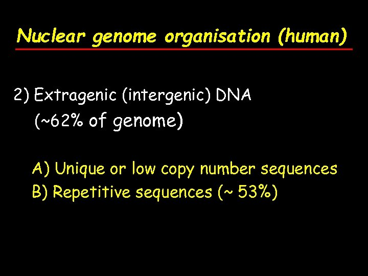 Nuclear genome organisation (human) 2) Extragenic (intergenic) DNA (~62% of genome) A) Unique or