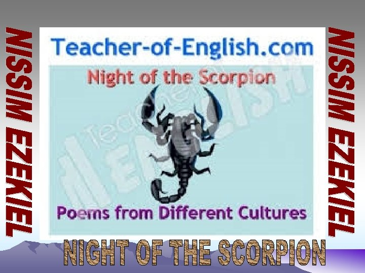 a response to night of the scorpion In vultures and night of the scorpion the description used is both vivid and horrific the descriptions cause the reader to have mixed emotions throughout the poems the poet changes his narrative perspective on things which in turn affects the reader this is what makes the poems thought.