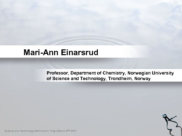 Mari-Ann Einarsrud Professor, Department of Chemistry, Norwegian University of Science and Technology, Trondheim, Norway