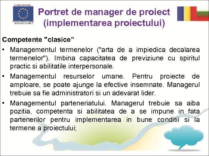 Portret de manager de proiect (implementarea proiectului) Competente